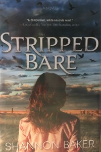 Blog Stripped Bare